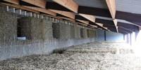 La Ligule - Histoire - Assemblage des murs en paille et de la structure en bois