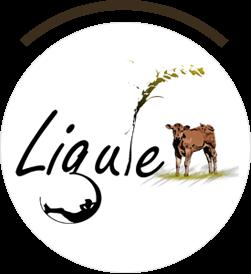 La Ligule - Gites, Spa, Bien être & Petite restauration